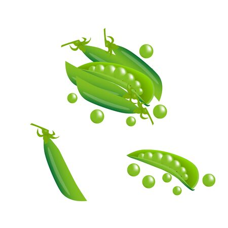 green fresh pea pods isolated vector illustration Illustration