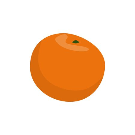 sweet tangerine isolated vector illustration