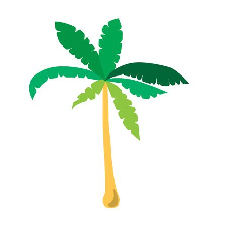 palm tree tropical isolated vector illustration Illustration