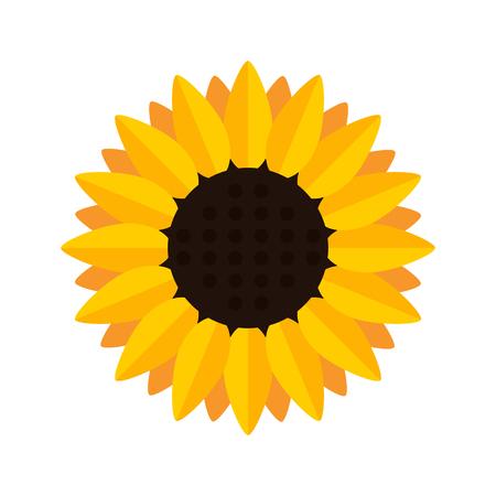 Sunflower blossom icon. Flat design. Vector illustration
