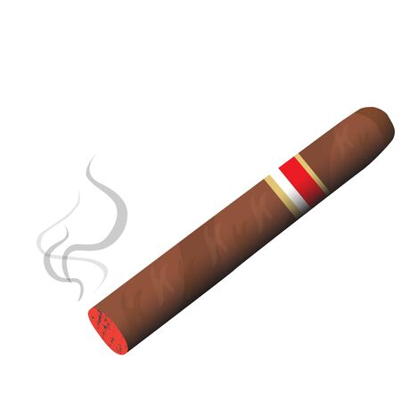 havana cigar: fragrant tobacco cigar burning smoke raster illustration