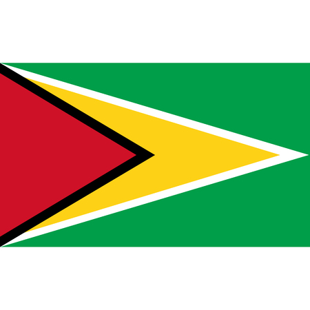 Guyana flag, official colors and proportion correctly. National Guyana flag. Vector illustration Stock Illustratie