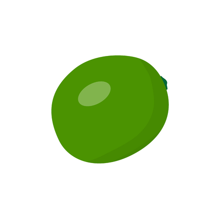 Raster illustration of lime. Fruit in simple style