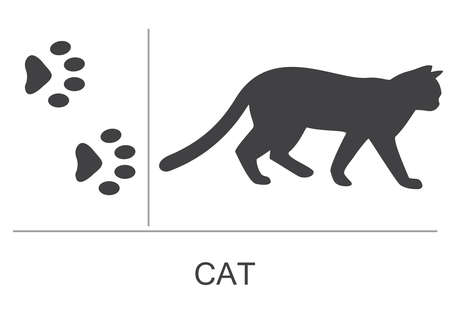 Cat silhouette and footprints. Vector illustration on a white background.
