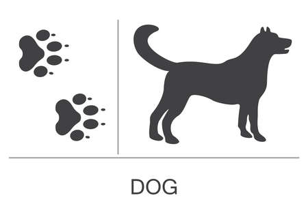 Silhouette and footprints of a dog. Vector illustration on a white background.