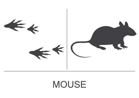 Mouse silhouette and prints of the hind and fore paws. Vector illustration on a white background.
