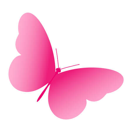 Pink butterfly. Vector illustration isolated on white background.