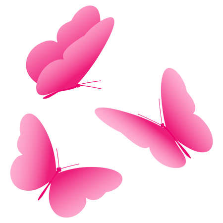 Pink butterfly, icon, set. Vector illustration isolated on white background.