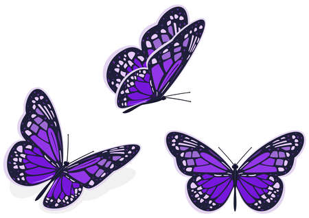 Dark purple butterfly, icon set. Vector illustration on a white background.