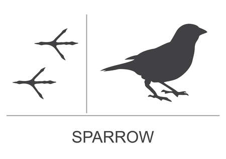 Silhouette and footprints of a sparrow. Vector illustration.