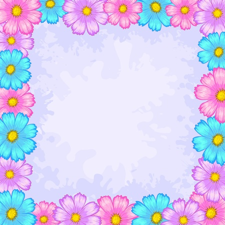Vector floral background, frame from flowers cosmos Vector