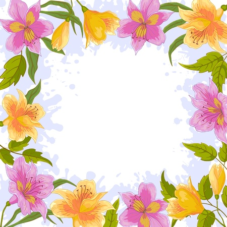 botanic: Vector floral background, frame from flowers alstroemeria Illustration