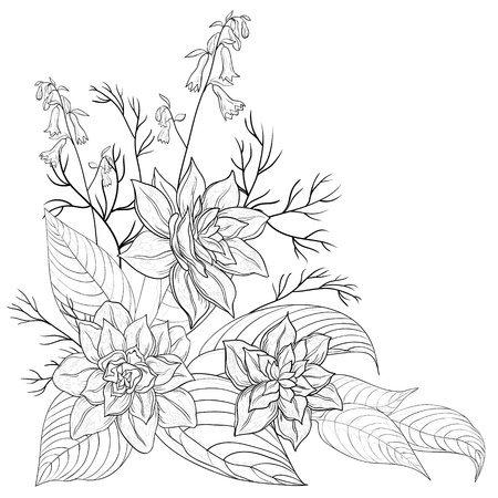 Flowers and leaves narcissuses, vector graphic, monochrome contours Illustration