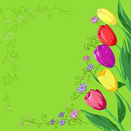 Flower vector background, tulips flowers and contour on a green Vector