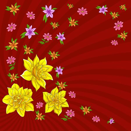 Vector background, pattern with flowers narcissuses and lines Vector
