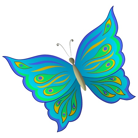 Butterfly with beautiful multi-coloured wings on a white background Vector