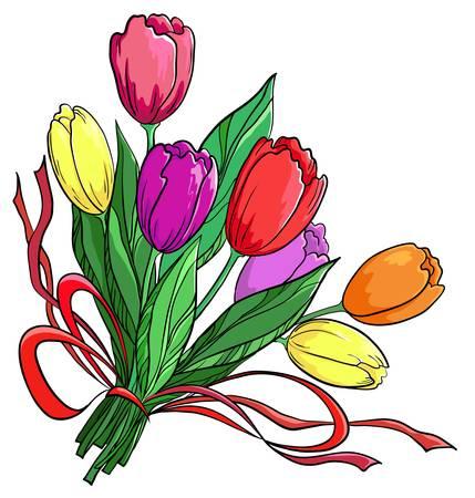 tulips isolated on white background: Flowers tulips, holiday bouquet on a white background