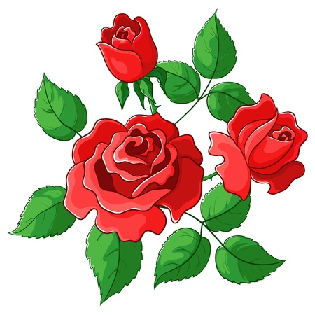 roses garden: Flowers roses, vector, red buds and green leaves