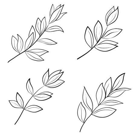 dessin au trait: Feuilles de diverses plantes, contours vectoriels set sur un fond blanc Illustration