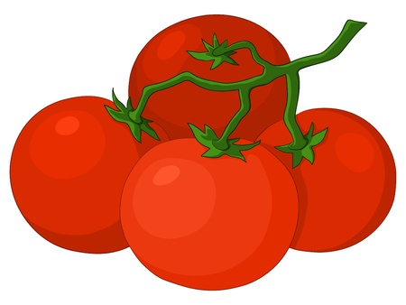 Cluster red fresh tomatoes on a green branch, vector Stock Vector - 9354096
