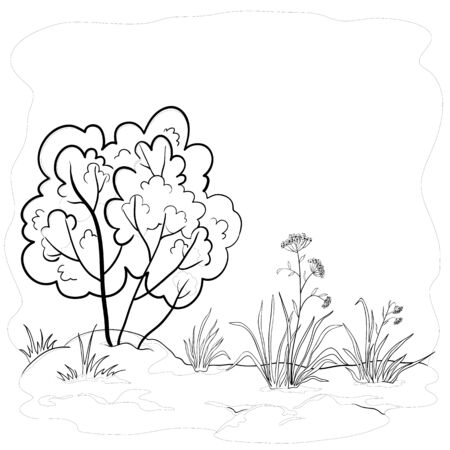 coppice: Vector landscape, garden with a grass, flowers and bush, contours Illustration