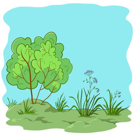 coppice: Vector nature landscape, garden with a grass, flowers and bush