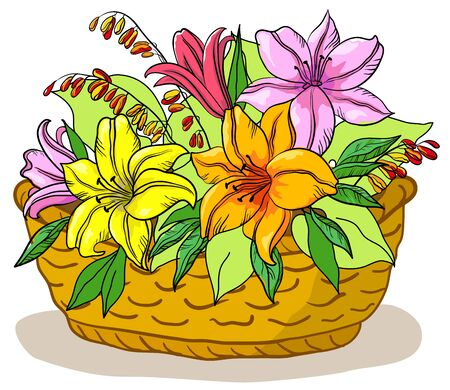 wattled basket with flowers lily and green leaves Stock Vector - 9501294