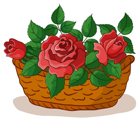 wattled basket with flowers red roses and green leaves Vector