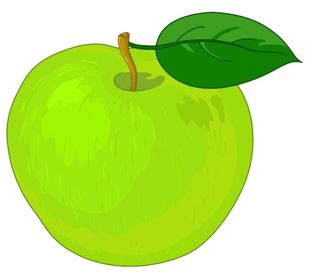 Vector, fruit, sweet green raw apple with green leaf Vector Illustration