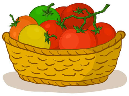 Vector, wattled basket with various fresh raw tomatoes photo