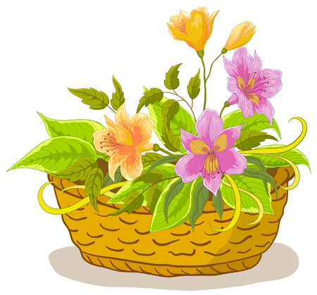 Vector, wattled basket with flowers alstroemeria and green leaves Vector