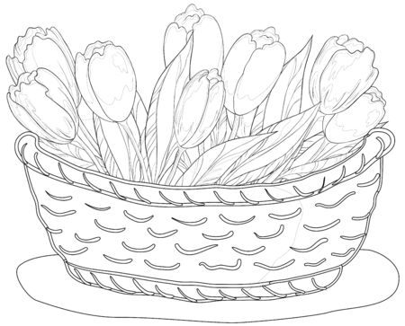 contours, wattled basket with flowers tulips and leaves Vector