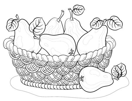 fruits basket: Vector, contours, wattled basket with fruits, pears with leaves