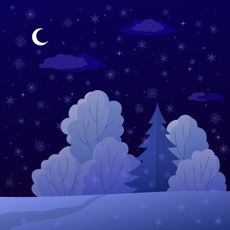 Vector, winter christmas landscape: night forest with coniferous and deciduous trees and snow Stock Vector - 9720063