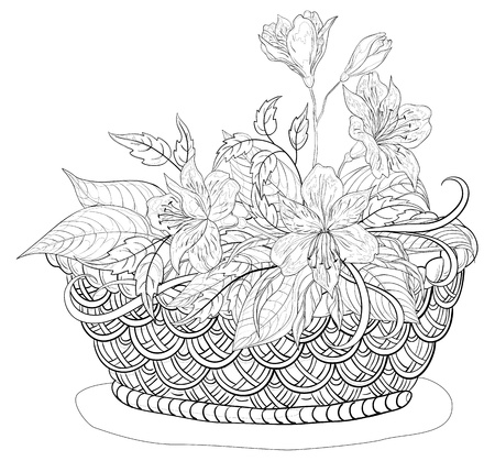 Vector, contours, wattled basket with flowers alstroemeria and leaves