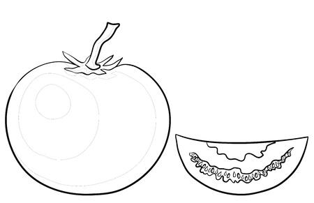 segmentar: Vector, vegetal, tomate y segmento, monocromo contornos en blanco