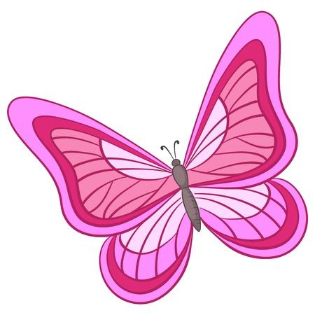 papillon rose: Vecteur, papillon avec diverses ailes color�es sur un fond blanc