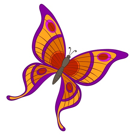 purple butterfly: Vector, butterfly with various colorful wings on a white background Illustration