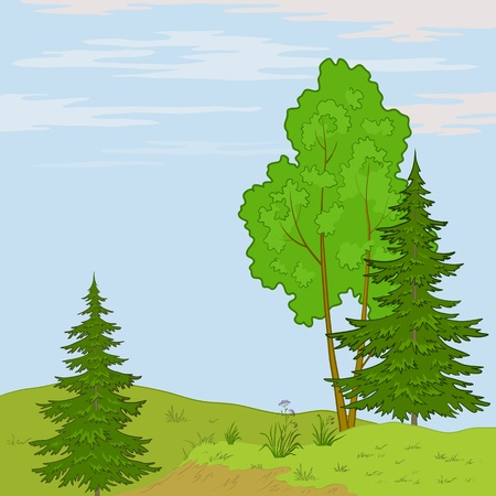 Vector, summer landscape: trees, flowers and the blue sky with white clouds