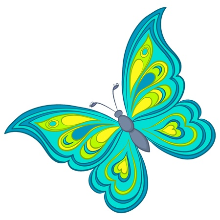 colorful butterfly: Vector, butterfly with various colorful wings on a white background Illustration