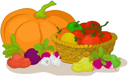 Vector, still life: various vegetables and wattled basket on white background Vector