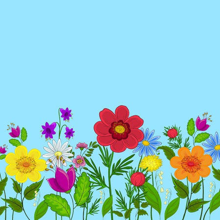 Different colored flowers on a background of blue sky Vector