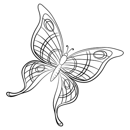 monarch: Vector, butterfly, hand-draw monochrome contours on a white background