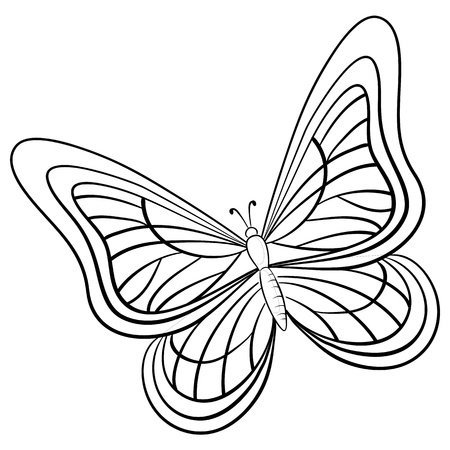butterfly, hand-draw monochrome contours on a white background Ilustracja
