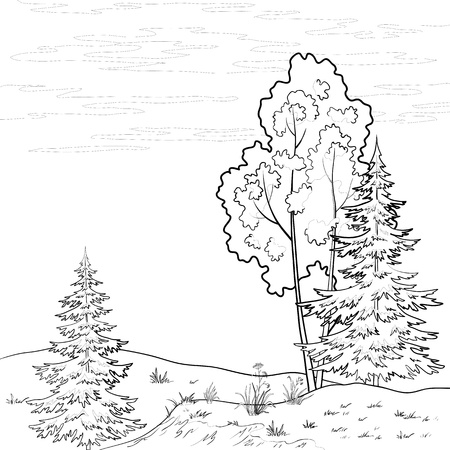 coppice: Vector, landscape: forest, river and sky with clouds, contour Illustration