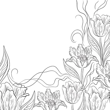 tulips: flower background, contours flowers tulips on white Illustration