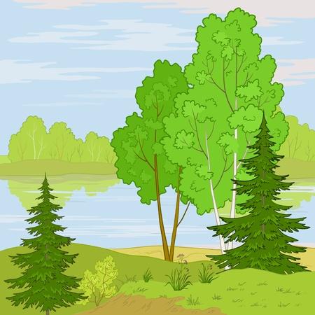 coniferous forest: paisaje de verano: bosque, r�o y el cielo azul con nubes blancas