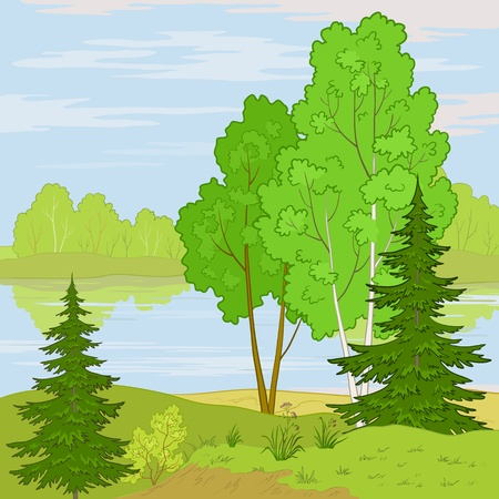lake shore: summer landscape: forest, river and the blue sky with white clouds Illustration
