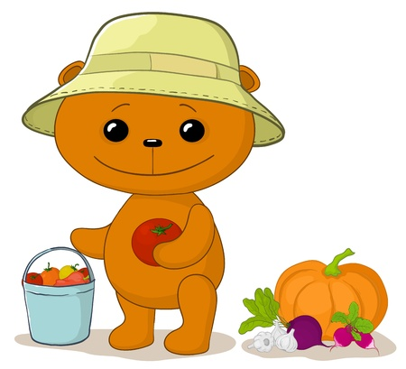 pumpkin tomato: Vector, teddy bear gardener with a crop of vegetables Illustration