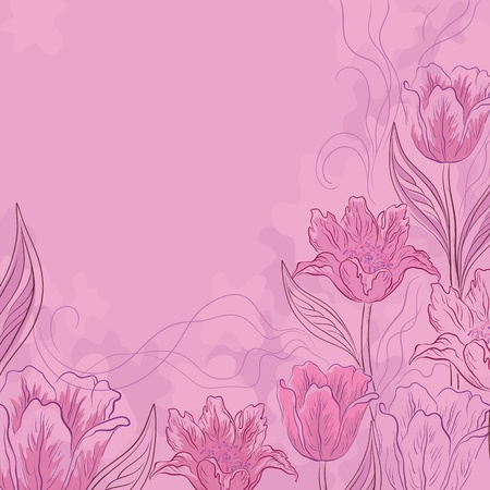 Vector flower pink background, contours and silhouettes flowers tulips Vector